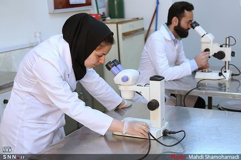 کشور های همسایه بهترین بازار برای خدمات آزمایشگاهی ایران هستند